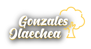 Mejoramiento de los servicios recreativos del parque Gonzales Olaechea